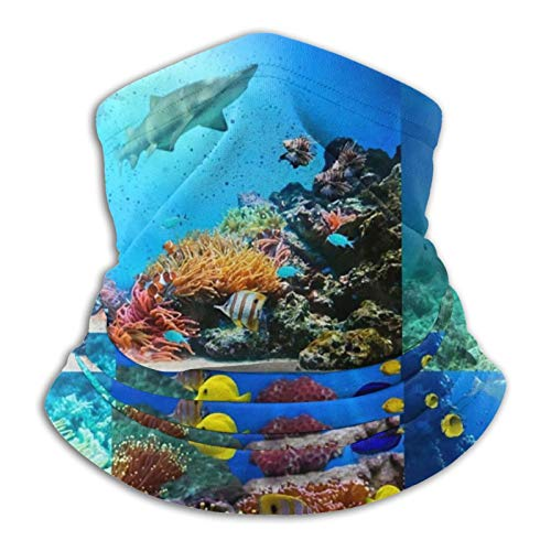 haoking Marine Life Neck Scarf,Outdoor Breathable Face Mask,Ideal for Hiking,Running,Cycling,Motorcycle,Skiing,Snowboarding