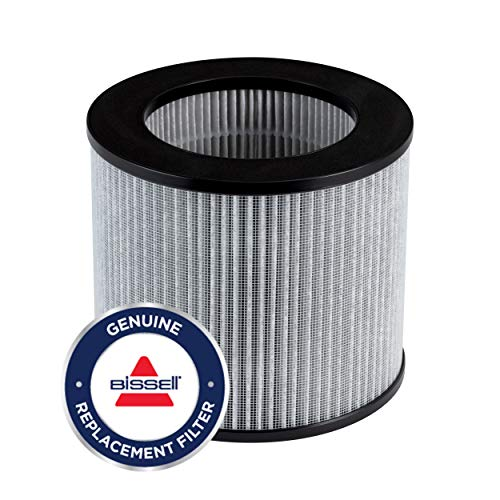 Bissell MYair Personal Air Purifier Replacement Filter (2801)