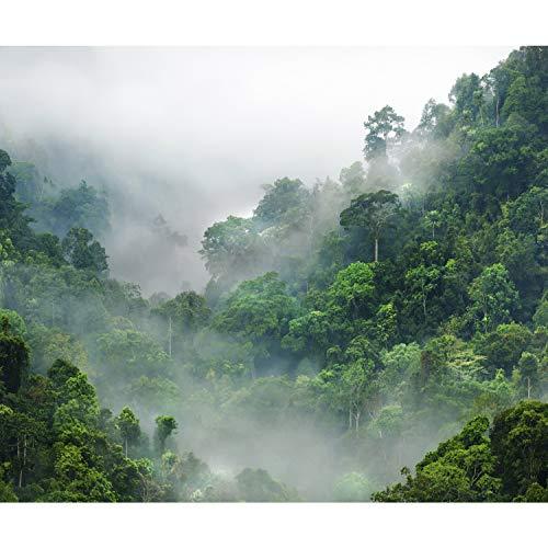 decomonkey Fototapete selbstklebend Wald Natur 245x175 cm XL Selbstklebende Tapeten Wand Fototapeten Tapete Wandtapete klebend Klebefolie Landschaft