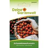 Johannisbeertomaten | Tomatensamen | Samen für Mini-Tomaten | Johannisbeer-Tomaten | Saatgut für kleine Tomaten
