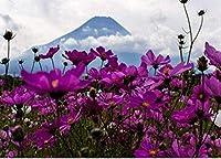 初心者の花の風景のためのカウントされたクロスステッチキット11CT刻印されたクロスステッチの事前に印刷されたパターン刺繡DIY子供たちの大人の家の装飾16x20インチ