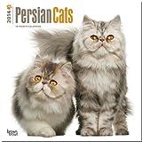 Persian Cats 2014 - Perserkatzen: Original BrownTrout-Kalender [Mehrsprachig] [Kalender]