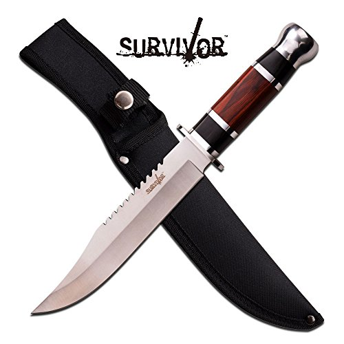 """12"""" Wood Hunting Survival Skinning Fixed Blade Knife Full Tang Army Bowie"""