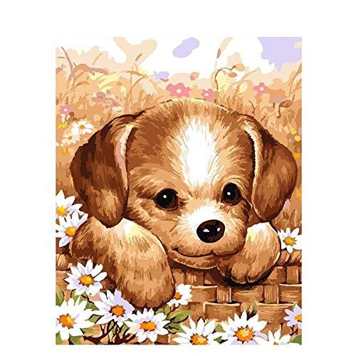 Xhzzdhbc olieverfschilderij schilderen op cijfers DIY Mooie honden DIY schilderij door cijfers dieren moderne muurkunst canvas schilderij & kalligrafie doos verzenden voor thuis Frameloos