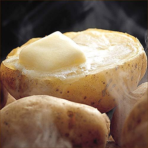 北海道産 新じゃが ご家庭用 じゃがいも 10kg (共撰/サイズお任せ/品種お任せ) 野菜 馬鈴薯 じゃがいも ジャガイモ 北海道 人気 お取り寄せ