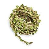 ruiting green leaves juta spago string 66ft favore della festa nuziale casa della decorazione del giardino di juta spago foglia corda