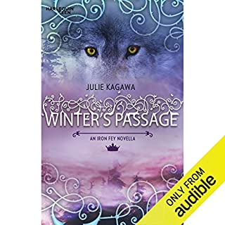 Winter's Passage audiobook cover art