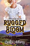 Rugged Bloom (Silverberry Romances Book 1)