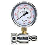 RIDGE WASHER Pressure Washer Gauge with 3/8 Inch Quick Connect Socket and Plug, 6000 PSI