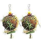 Acidea - Set di 2 giocattoli da masticare per uccelli, per foraggiare, frantumare, giocattolo per pappagalli, sminuzzatore, per cocacaziel conure, grigio africano Amazon