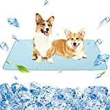 """Best Cooling Pad For Dogs - KOOLTAIL Dog Self Cooling Mat - 48"""" X Review"""