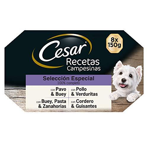 Cesar Comida Húmeda para Perros, Selección Recetas Campesinas en Salsa, Multipack (Pack de 3 x 8 Tarrinas x 150g) ✅