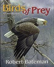 Birds of Prey: An Introduction