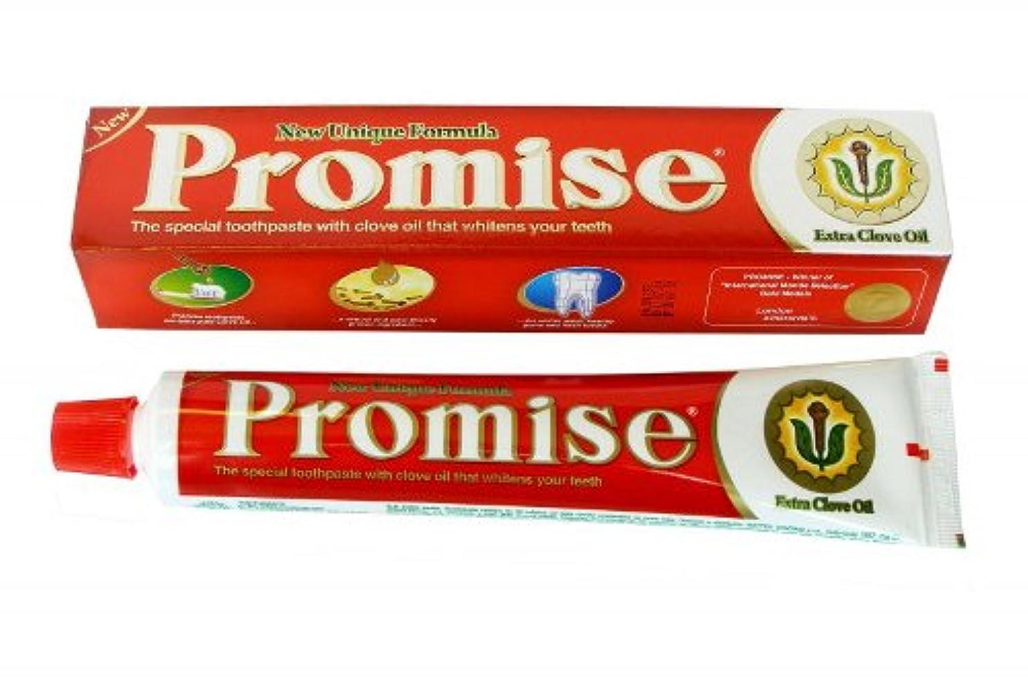 無効にする私たち自身両方Dabur Promise チョコレートオイル入り練り歯磨き 150g 2個 [並行輸入品]