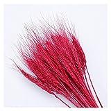 KXLBHJXB 50Pcs / Lot natürliche getrocknete Blume Weizen-Ohren Blumenstrauß for Hochzeitsfest-Dekoration DIY Fertigkeit-Hauptdekor Scrapbook Weizen Zweig Props Getrocknete Blumen (Color : Red)