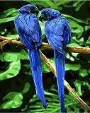 FDDPT DIY Leinwand Ölgemälde Kit Erwachsene Blauer Vogel Malen nach Zahlen für Kinder Anfänger Geschenk Art Home Haus Dekor 40x50cm