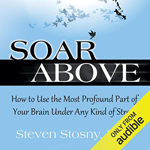 Soar Above audiobook cover art