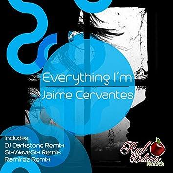 Everything I'm