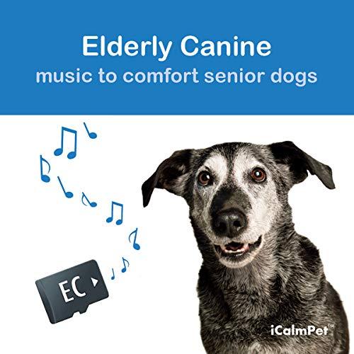 iCalmDog Elderly Canine   Music by Through a Dog