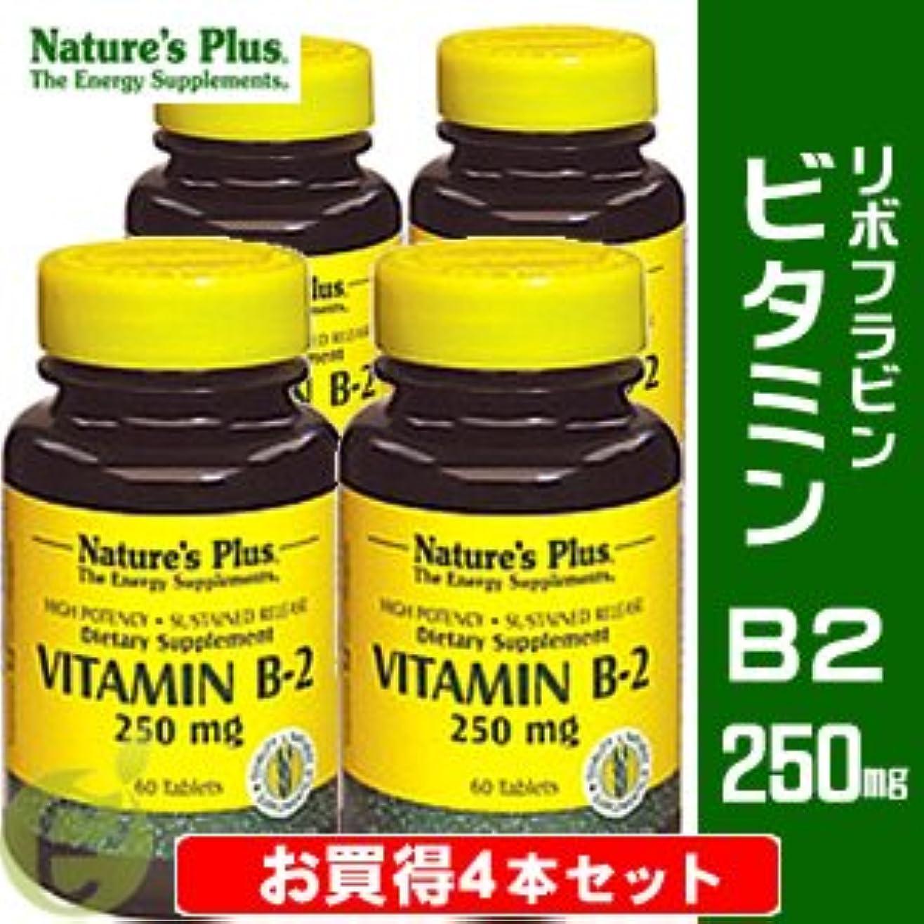 革命に同意する傷つきやすいビタミンB2 250mg (リボフラビン) 【お買得4本セット】