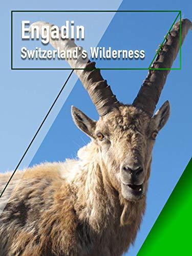 Engadin - Switzerland's Wilderness