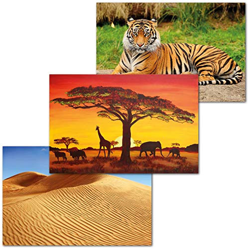 GREAT ART® Juego de 3 carteles – África – Sabana Puesta de sol Sahara Desierto Selva Tigre Naturaleza Paisaje Ciudad Decoración de interiores Mural (Din A2 - 42 x 59,4)