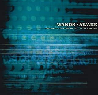 [Album] WANDS – AWAKE [MP3 320 / CD]