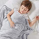 Degrees Of Comfort Kids Weighted Blanket with Cover, 1 x Cozyheat Minky Plush, 1 x Coolmax Washable Covers Included | Micro Glass Beads Technology | 41x60 8 lbs Grey