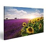 Bild Bilder auf Leinwand Lavendel und Sonnenblumen Felder,