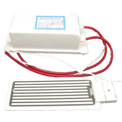 easybuyeur New Ozone Generator 5g/h Ozone Generator Ignition Coil Ozone Purifier accessorie 220V AC nuovo Ozone generatore 5g/h ciotole ceramica per purificatore di aria AC 220V