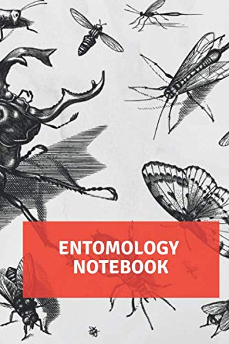 ENTOMOLOGY NOTEBOOK - Large (6