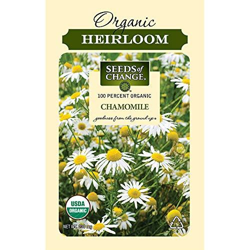 Seeds of Change 1094 Certified Organic German Chamomile, Green