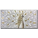 Yotree Wall Art, 24x48 Inch Paintings 3D Peacock Oil paintings Simple Style Abstract Painting with Frame Easy to Hang White Gray