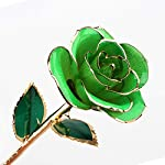 heepdd deep green gold rose, green gold dipped real rose gifts best wedding anniversary valentines day love gift for wife girlfriend spouse