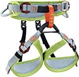 Climbing Technology Ascent, Harnais Mixte Enfant, Vert/Gris, XXS