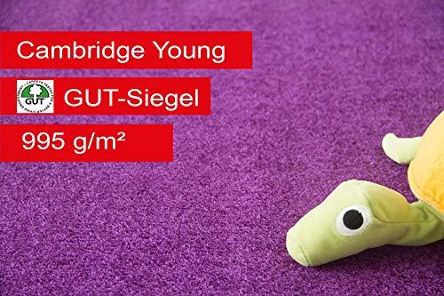 Steffensmeier Teppichboden Cambridge Young Meterware | Auslegware für Kinderzimmer Wohnzimmer Schlafzimmer | Lila, Größe: 300x500 cm