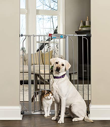 Carlson Extra Tall Walk Through Pet Gate with Small Pet Door, Includes 4-Inch Extension Kit, 4 Pack...