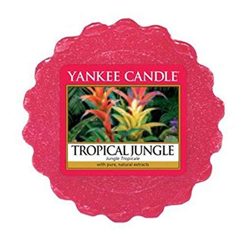 Yankee Candle Tropical Jungle Wax Melt, 22 g