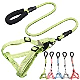 CHBORLESS No Pull Dog Harness Leash Set Adjustable Vest Durable Heavy Duty Training Dog Leash Puppy Basic Harness Leash for Small Dogs (Green, M)