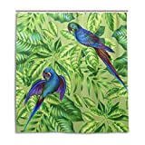 vinlin Duschvorhang mit tropischem Papageien-Muster, wasserfest, 167,6 x 182,9 cm, Polyester, Multi, 66x72 inch