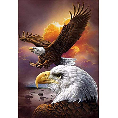 DIY 5D Diamond Painting by Number Kit, Full Drill Dusk Eagles Animal Embroidery Cross Stitch Rhinestone Pictures Arts Craft Home Wall Decor 11.8x15.8 inch