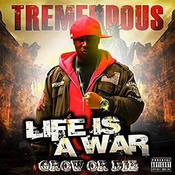 Life Is a War