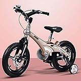LYP Triciclo Bebé Trolley Trike Bicicleta for niños convenientes, niña 14/16 Pulgadas Bicicleta de bebé 2-3-6 años de Edad Carro de bebé Bicicleta cómoda (Color : Gold, Size : 14 Inch)