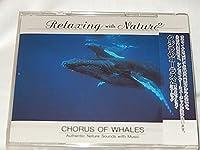 クジラのコーラスとリラクゼイション・ミュージック