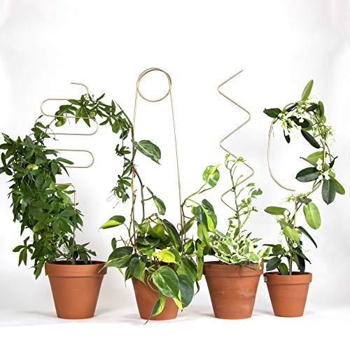 Botanopia Rankhilfe - 4 Rankhilfen für Kletterpflanzen, Zimmerpflanzen & mehr - 4 Verschiedene Designs - Dekorative Spaliere für Pflanzen - Aus Recycling-Aluminium hergestellt - Für Pflanzkasten