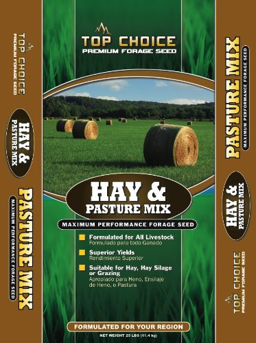 Top Choice 17646 Hay and Pasture Grass Seed Mixture, 25-Pound