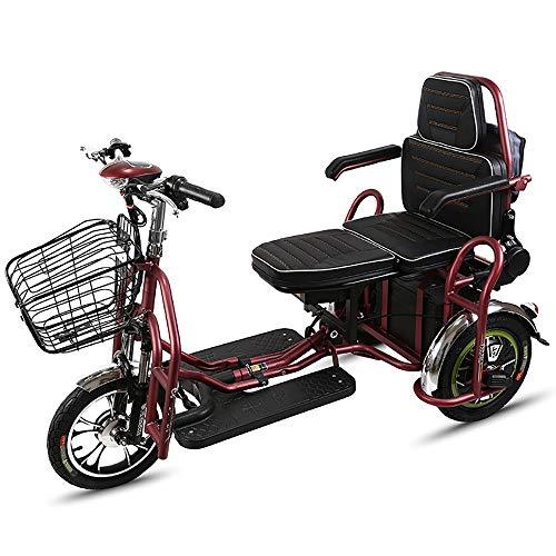 COKECO Scooter Eléctrico Personas con Movilidad Reducida,350W Doble Triciclo Eléctrico De Ocio para Ancianos 48V20Ah Batería De Litio, Scooter Ajustable De Tres Velocidades, Vehículo