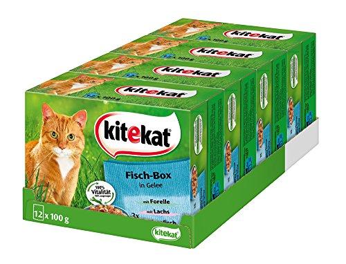 Kitekat Katzenfutter Nassfutter Fisch Box in Gelee, 48 Portionsbeutel (4 x 12 x 100g)