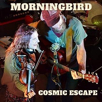 Cosmic Escape