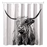 Shower Curtain,Portrait of a Highland Cow (72 x 72inch)